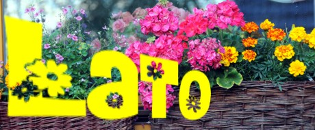 http://www.kamratowka.pl/assets/images/miniatury/a-kamrat/wisla-noclegi-lato-oferta-midi.jpg
